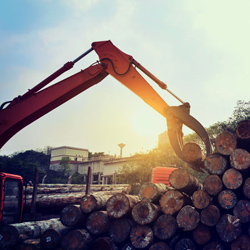 Forestry & landscaping
